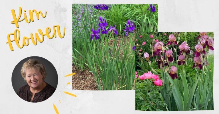 flowers from Kim's garden
